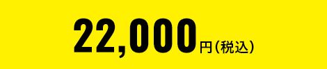 11,000円(税別)